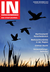 IN65_Ausgabe_November_2016_Titel