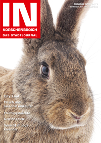 IN70_Ausgabe_April_2017_Titel